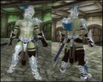 Slofs Silverlight Armor