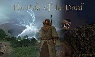 Druid Mod