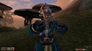Morrowind FPS Optimizer