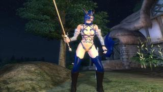 Lady Blue Armor